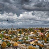 Повседненая жизнь :: Александр Афромеев