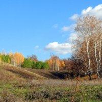 Пейзажи октября :: Андрей Заломленков