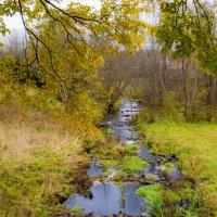 Про осень* :: ФотоЛюбка *