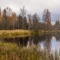 Про осень** :: ФотоЛюбка *