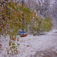 Первый снег---15 :: Владимир Холодный