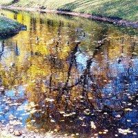 Осень в отражении. :: МАРИНА ХАРЧЕНКОВА