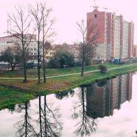 Отражение в реке :: Марина Романова