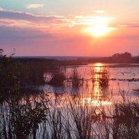 Отражение закатного солнца в реке Караганке :: Яна Иньская
