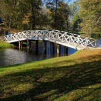 По мосту, мосточку :: Ирина Шурлапова