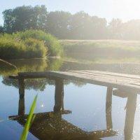 лето, ранее утро, много солнца, пруд, мостки, лето в деревне :: Алена Булдина