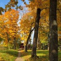 Осень Спасского - Лутовиново :: Laborant Григоров