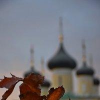 Осень :: Роман Воронежский