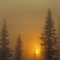 Восход солнца в тумане :: Сергей Чиняев
