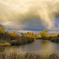 Роняет небо золотые нити :: Сергей Раннев
