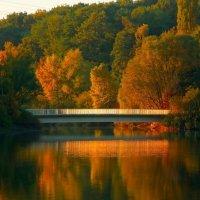 Утро красит :: Alexander Andronik