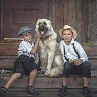 Деревенская история Вити и Пети :: Evgeniya