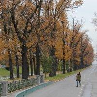 Осень в Стрельне. :: Наталья Лунева