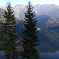 Озеро Рица. :: Нелли *