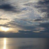 Финский залив :: Marina Pavlova