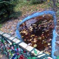 Осенний купаж в парке. :: Ольга Кривых