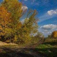 Осень :: Вера