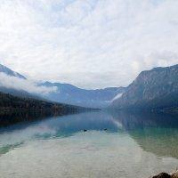 озеро Бохинь :: Gala Sarychev