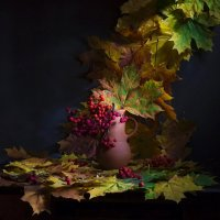 Краски листопада :: Svetlana Sneg