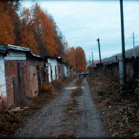 осень :: Лариса Тарасова