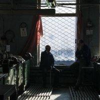 На рабочем месте.. :: Yuriy Puzhalin