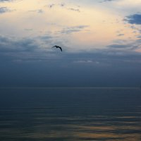 Море-море :: Анатолий