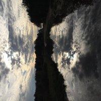 Отражение неба в гольф-пруду среди дюн близ Финского залива :: Оксана Ярёменко