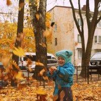 Веселый листопад ). :: сергей лебедев