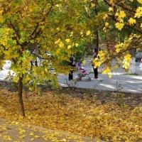 Осенняя краса :: Татьяна Смоляниченко
