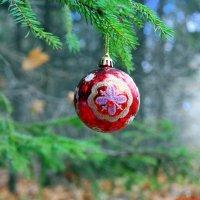 А до Нового года осталось всего 69 дней.. :: Андрей Заломленков