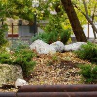 Неяпонский сад камней :: Константин Косов