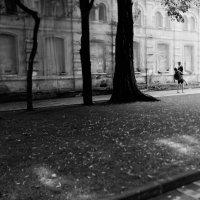 Love story фотосессия в Ставрополе :: Александр Кравченко