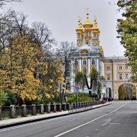 Вид на церковь Воскресения Христова в Екатерининском Дворце. :: Марина Волкова
