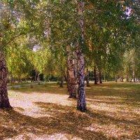 Немного ранней осени. :: Мила Бовкун