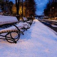 Первый снег... :: Светлана Игнатьева