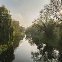 Утро на реке :: Валерий Чернов