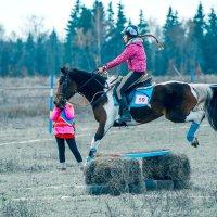 Кубок Москвы по конному туризму :: Андрей Куприянов