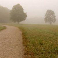 По туманной дороге-шел я молча .... :: Alexander