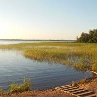 Ясный вечер на озере :: Татьяна
