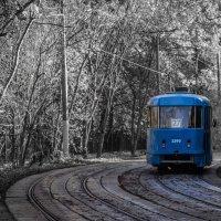 Голубой вагон :: Elena Ignatova