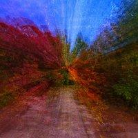 осенних красок калейдоскоп :: Андрей Козлов
