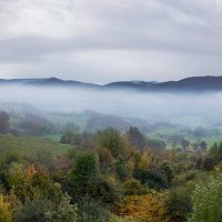 осенний туман :: Elena Wymann