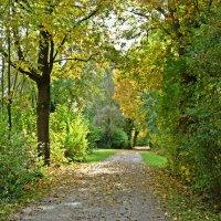 """""""Листья желтые будут кружиться,   Ранним утром и пасмурным днем..."""" :: Galina Dzubina"""