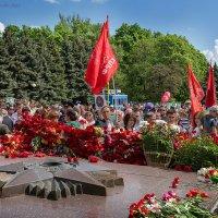 9 мая 2016 г. Курск :: Евгений Старков