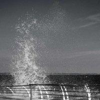 Волна — воплощение свободы. :: Елена Данько