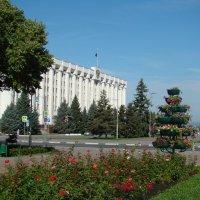 Площадь Славы и здание администрации :: марина ковшова