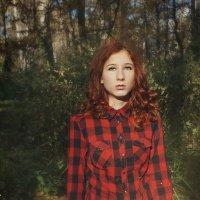 таинственный лес :: Софья Лейкина