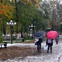 Осень в парке :: Вячеслав Платонов