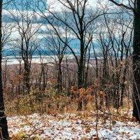 Осенний вид на Амур. :: Поток