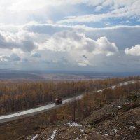 дорога дальняя :: Наталья Литвинчук